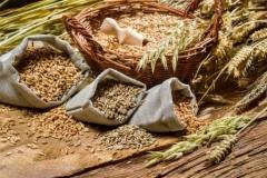 Рекомендовані системи захисту для зернових культур